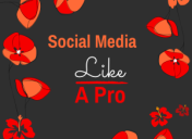 Handle Your Business Social Media Accounts Like A Pro