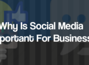 6 Reasons Why Is Social Media Important For Business